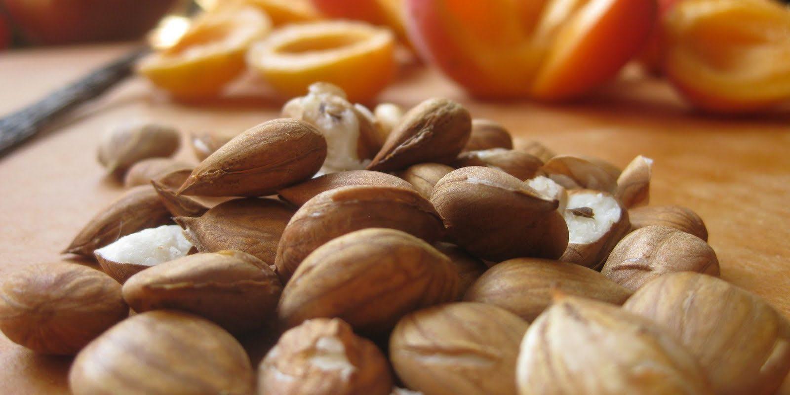 Turkish Apricot Kernels – Turkey Dalal | Your agent in Turkey